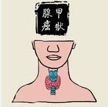 中医治疗甲状腺癌