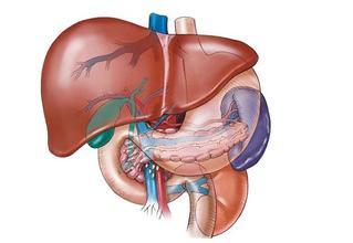 晚期肝癌能活多久